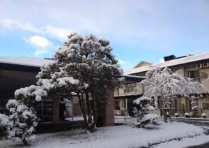 写真(10)玄関前雪