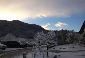 写真(9)駐車場雪